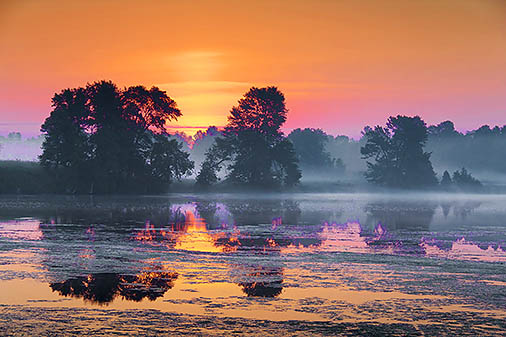 Misty Sunrise 24510