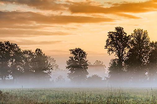 Misty Sunrise 26806