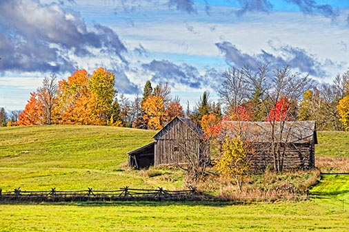 Autumn Barns 29432