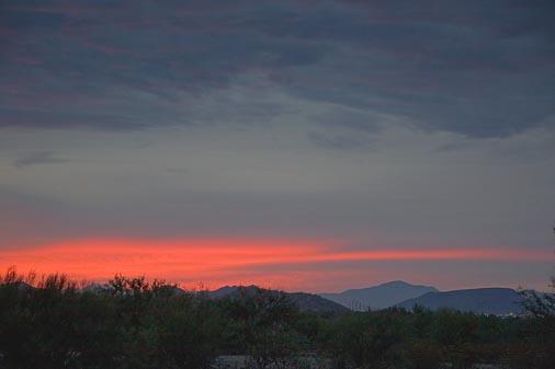 Fizzled Sunrise 74551