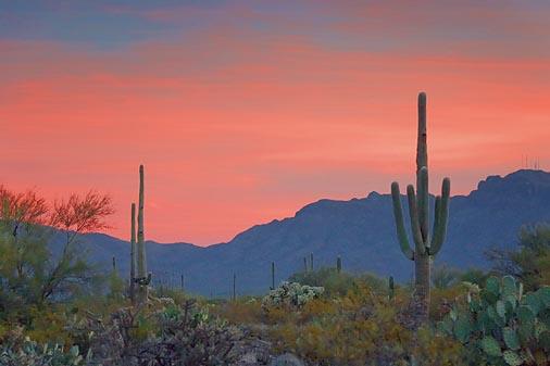 Arizona Sunrise 20071127