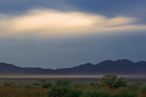 Desert Scene 74936