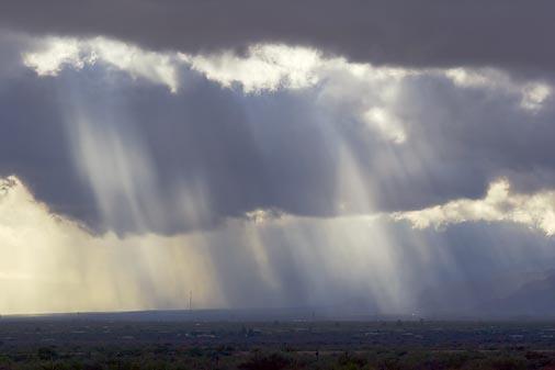 Rainrays 75441