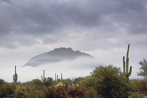 Desert Fog 20071210