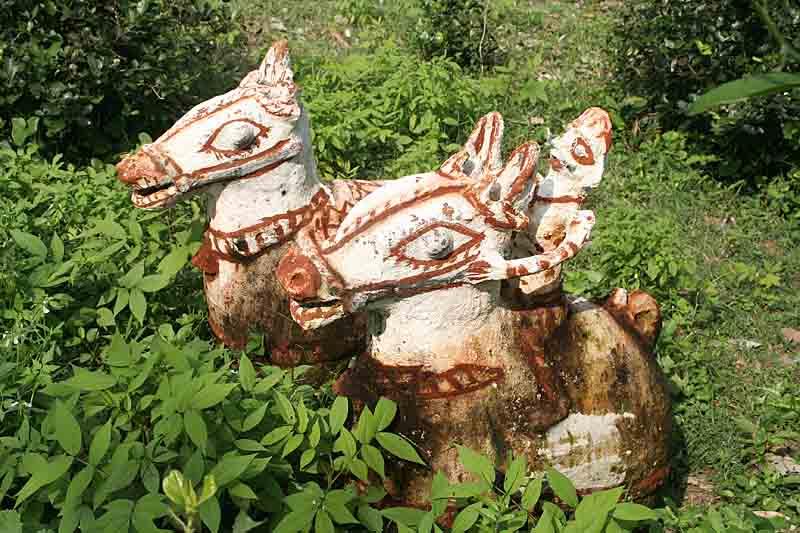 At an Ayyanar temple near Chidambaram. http://www.blurb.com/books/3782738