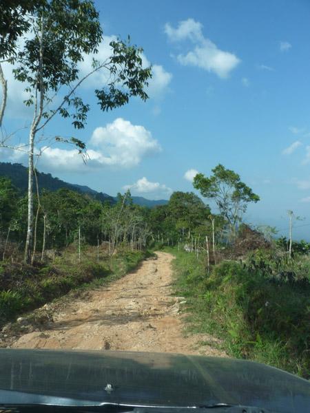 En route to Pauxi Pauxi 15
