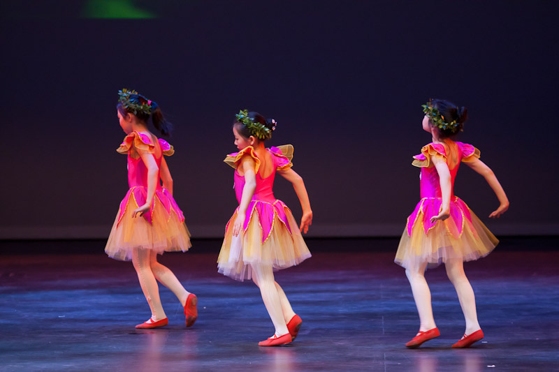 20110529_Red Dance Shoes_1111.jpg