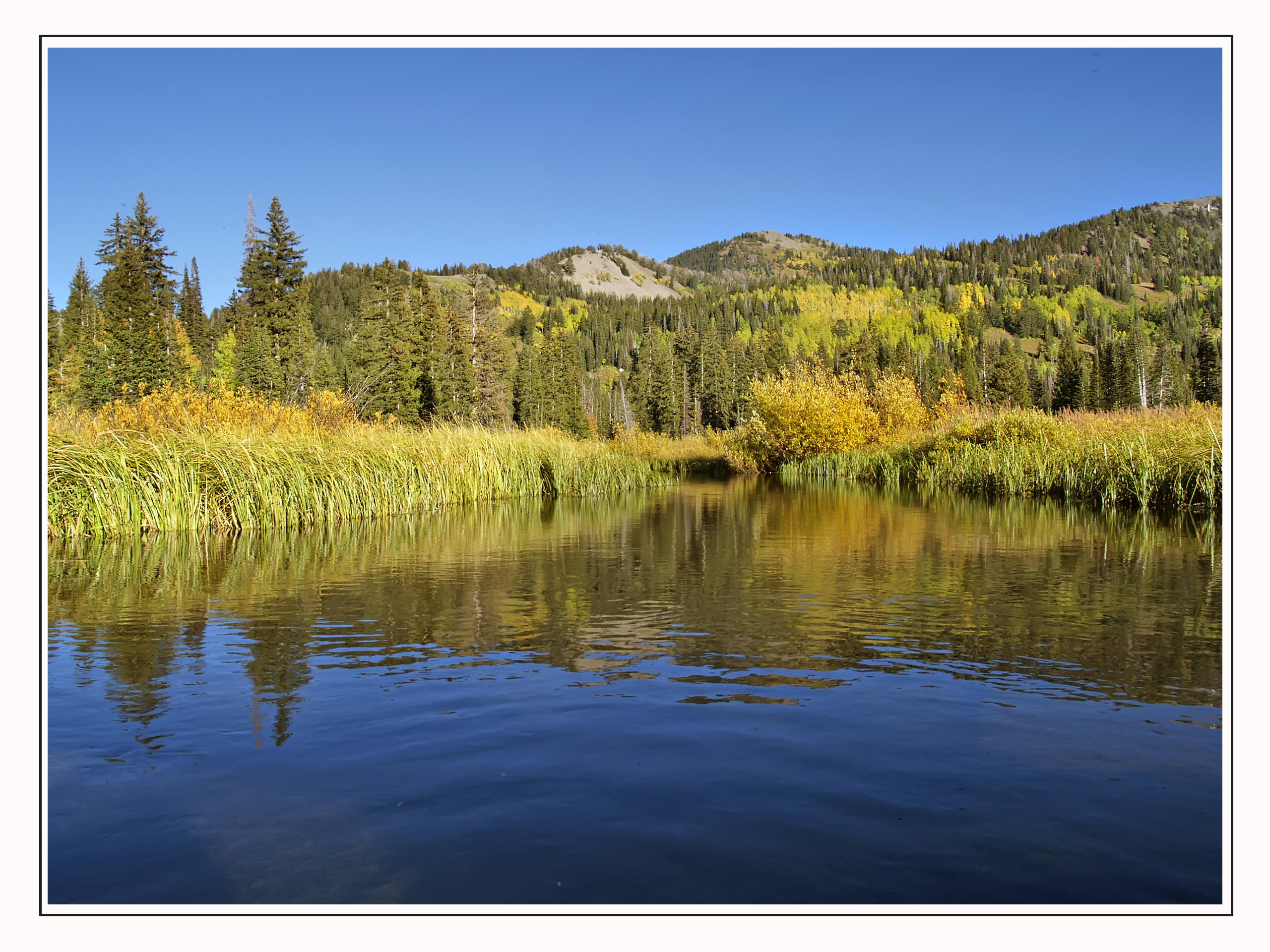 silver lake .jpg