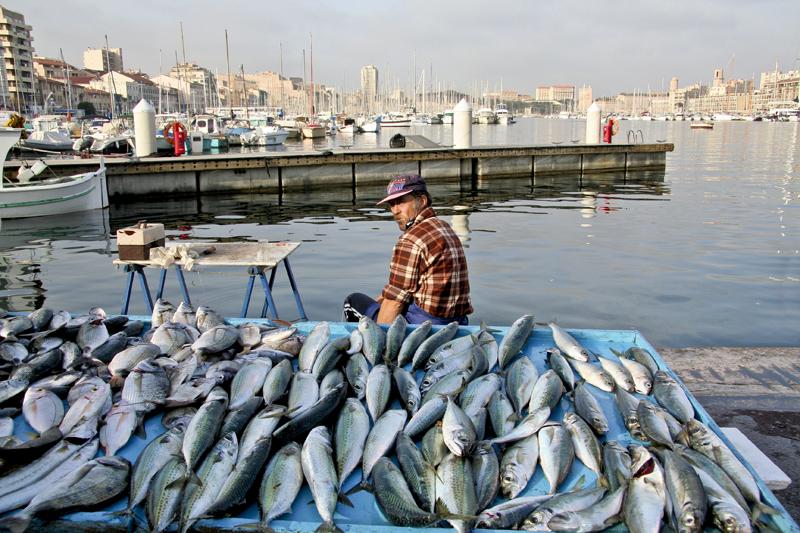 Fish market at Le Vieux Port