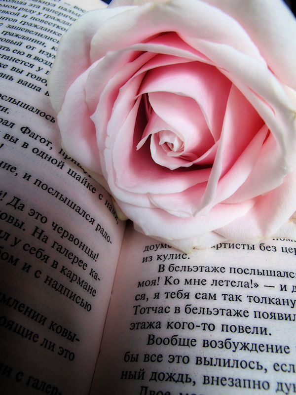 The rose who spoke Russian....