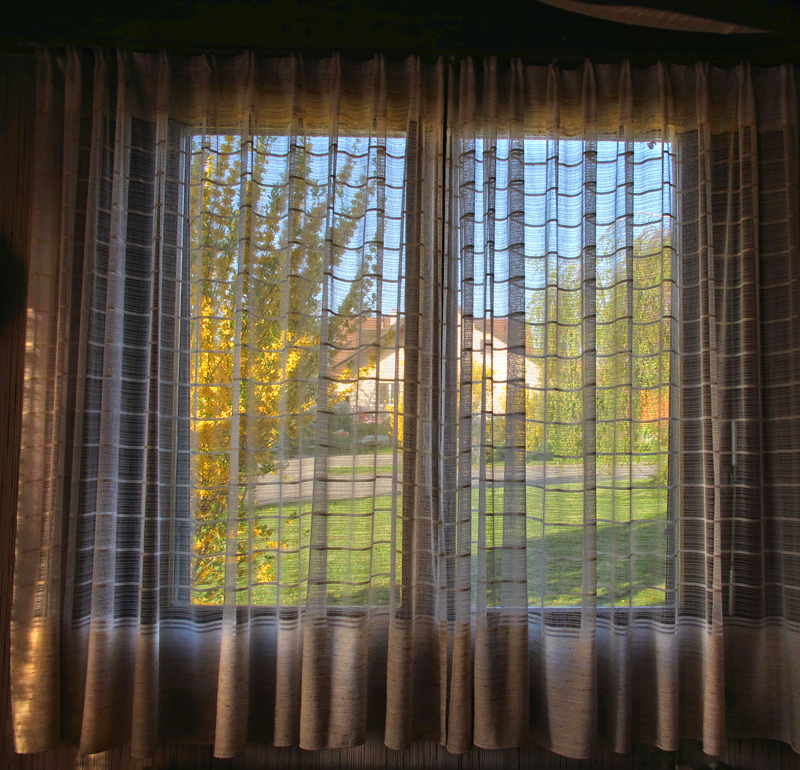 The window which peeped at Spring....