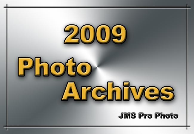 2009-Icon.jpg