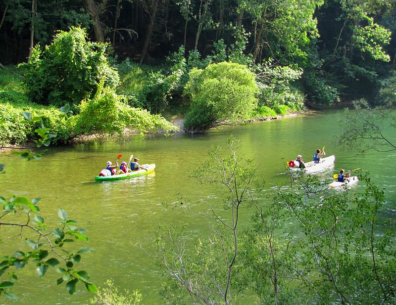 Kayaks sur le Tarn