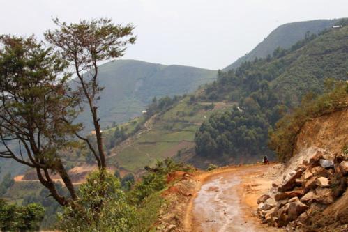 4923 Road to Rwanda.jpg