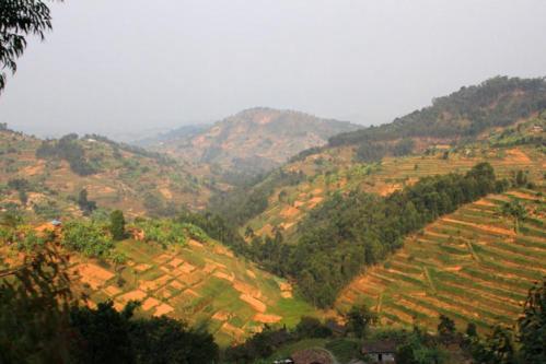 5233 Land of Thousand Hills.jpg