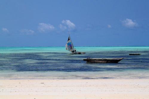7043 Jambiani Beach Zanzibar.jpg