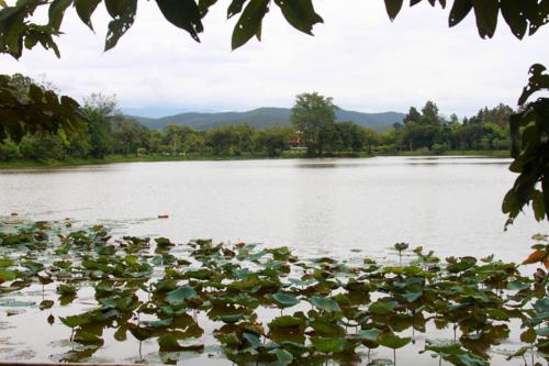 1379 Lake of Lillies.jpg