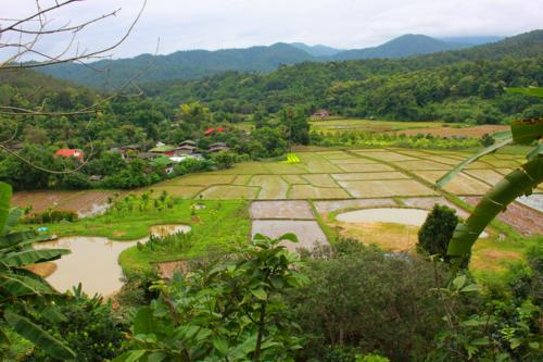 1405 Overlooking lush valley.jpg