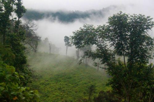 1539 Misty hills Laos.jpg