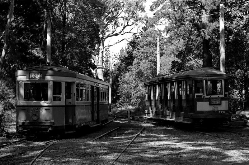 R1 & N Class Trams