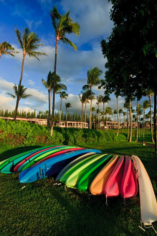Kayaks 02996