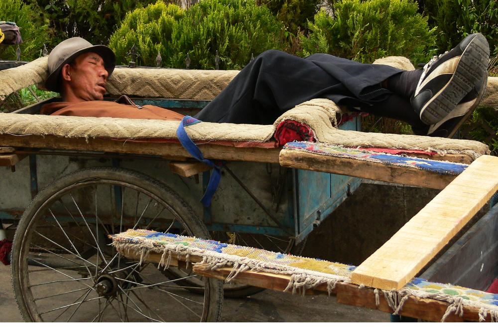 Asleep in his cart