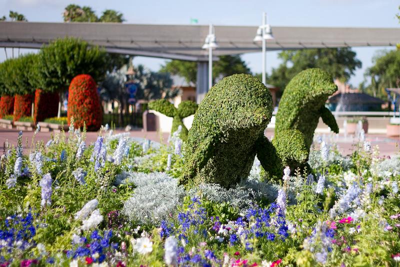 Dolphin Topiary