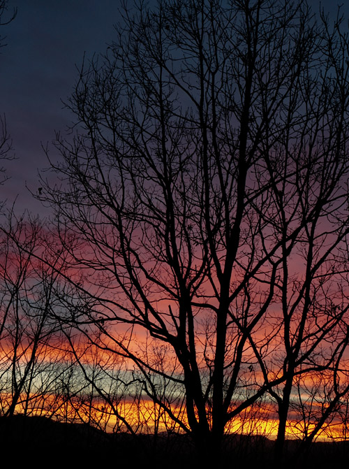 _MG_0742 Spectacular Sunset Tonight