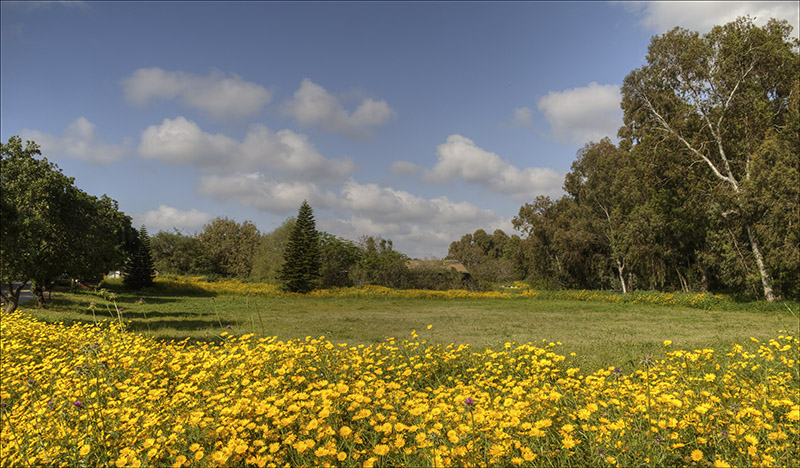 Kibbutz Gil Yam on a Spring Day.jpg