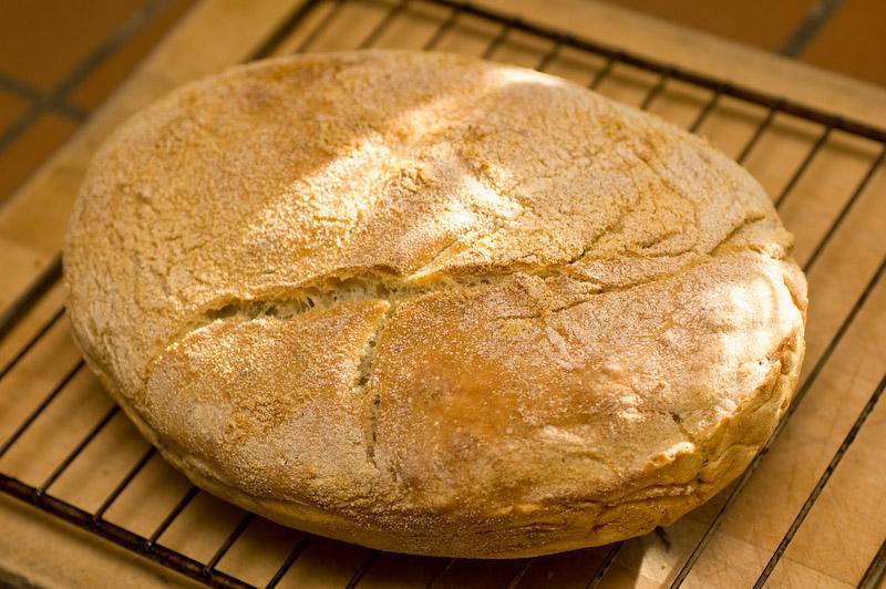 homemade rosemary ciabatta bread 1