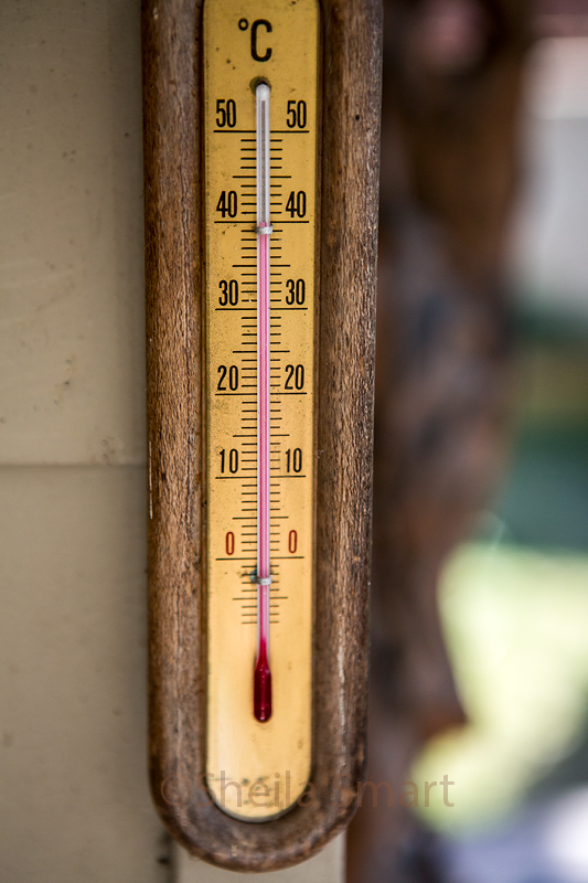 40 degrees C in the shade on our deck