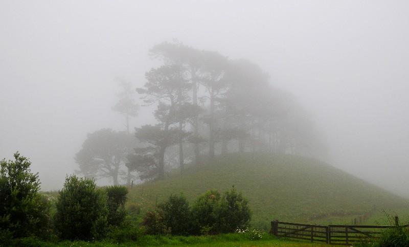 Ragland landscape