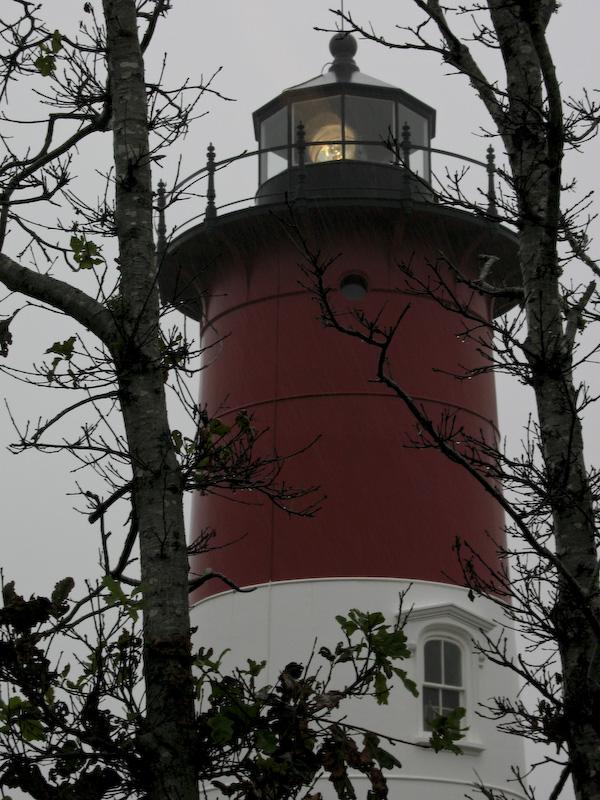 Cape Cod Sierra Club Trip 2007-16.jpg