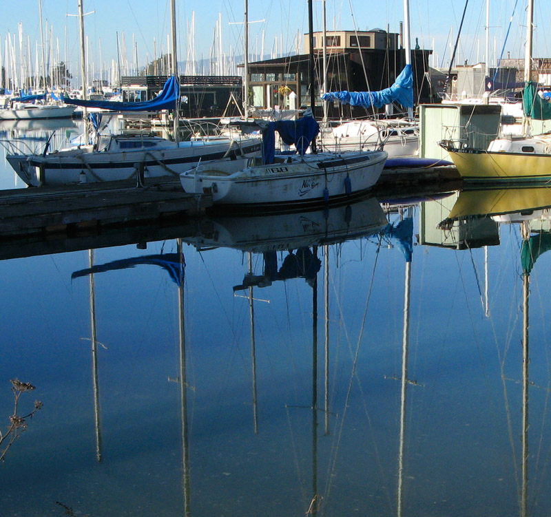 Reflections in still waters - mImg_2535vert.