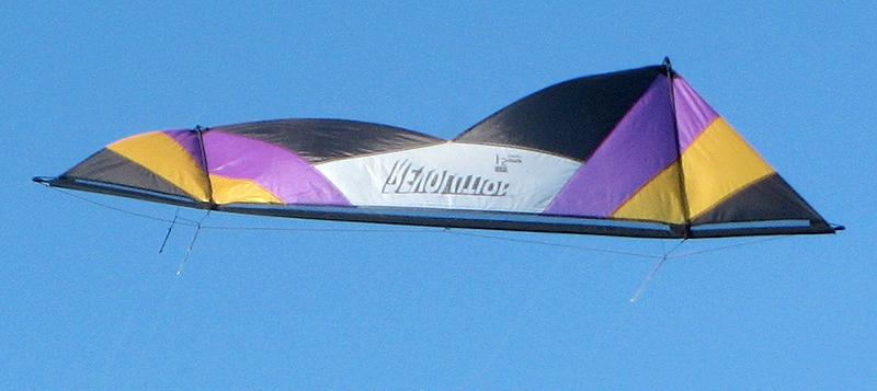 Great looking kite - mImg_2546