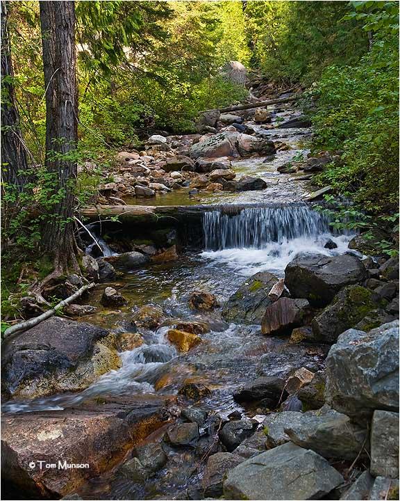 Harvey Creek