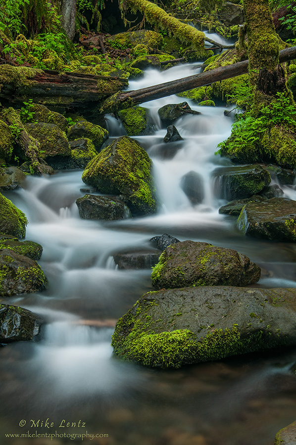 Stream near Metlako falls (Oregon)
