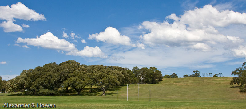 Moore Park playing fields