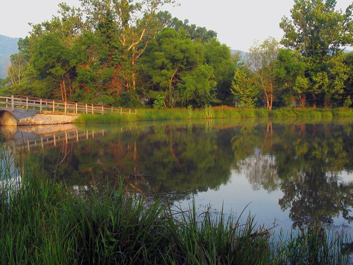 Cove Lake Sunrise