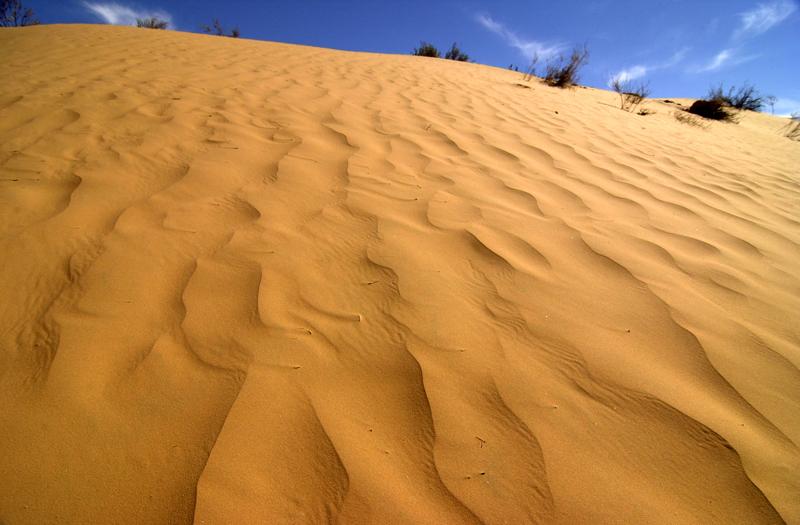 Dune du Reg