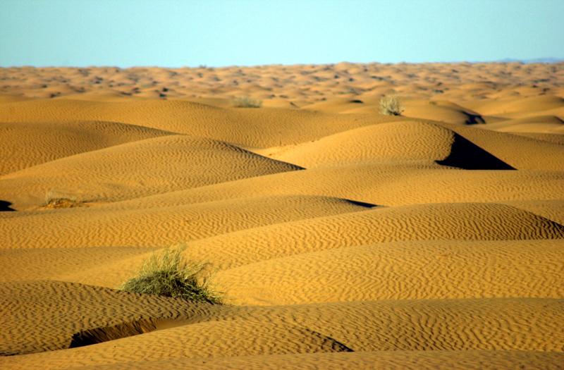 Dunes Ksar Ghilane 7