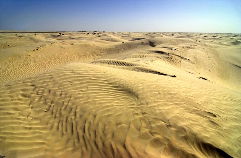 Dunes Zaafrane 1