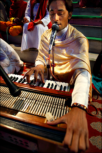 Harmonium Player