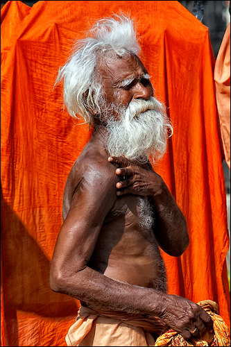 Portrait of the White Sadhu