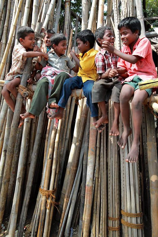 Fun on a Bamboo stick