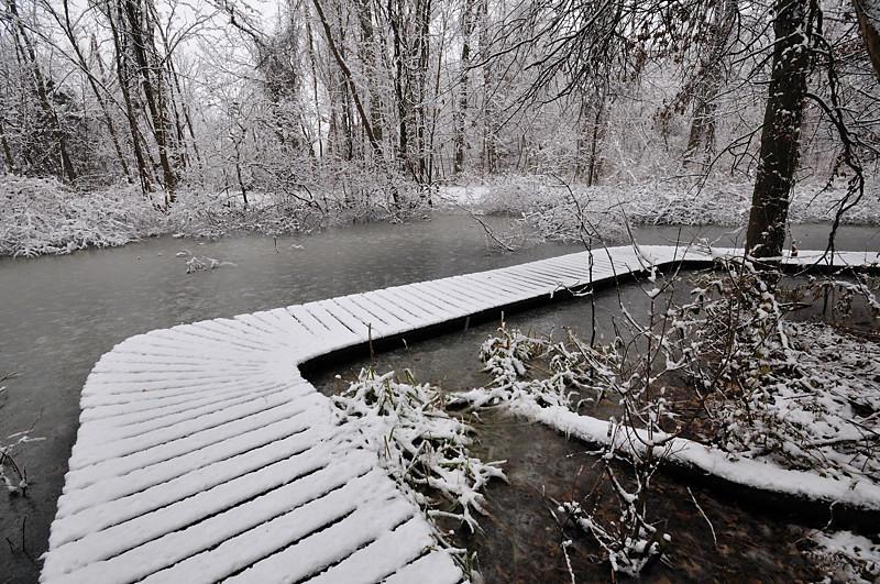North of Powel Crosley Lake Pond Walkway