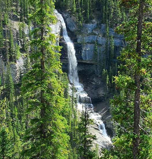 Bridal Veil Falls Along The Icefields Parkway