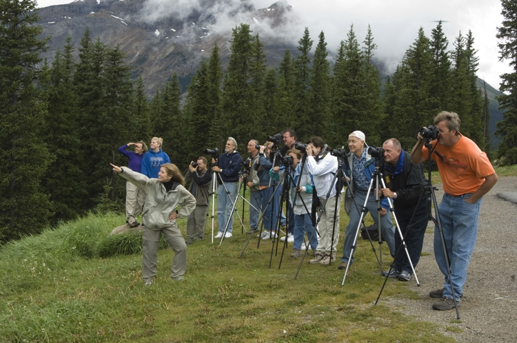 The Group Shooting Crowfoot Mountain and Crowfoot Glacier