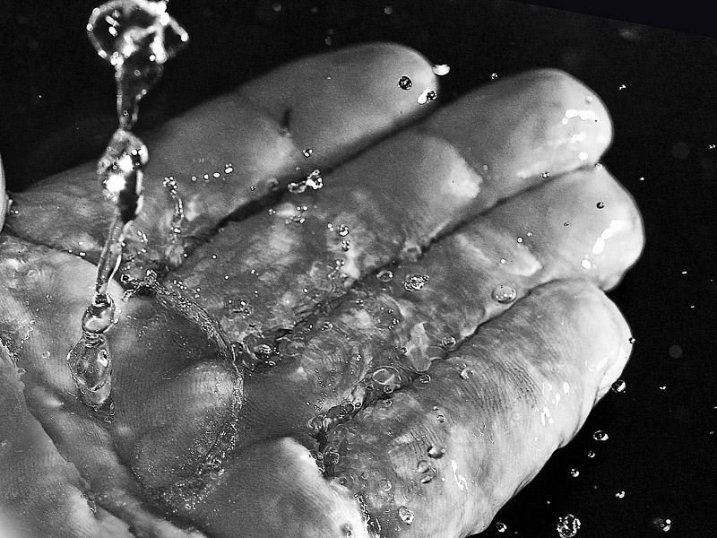 Water = Life - Miro