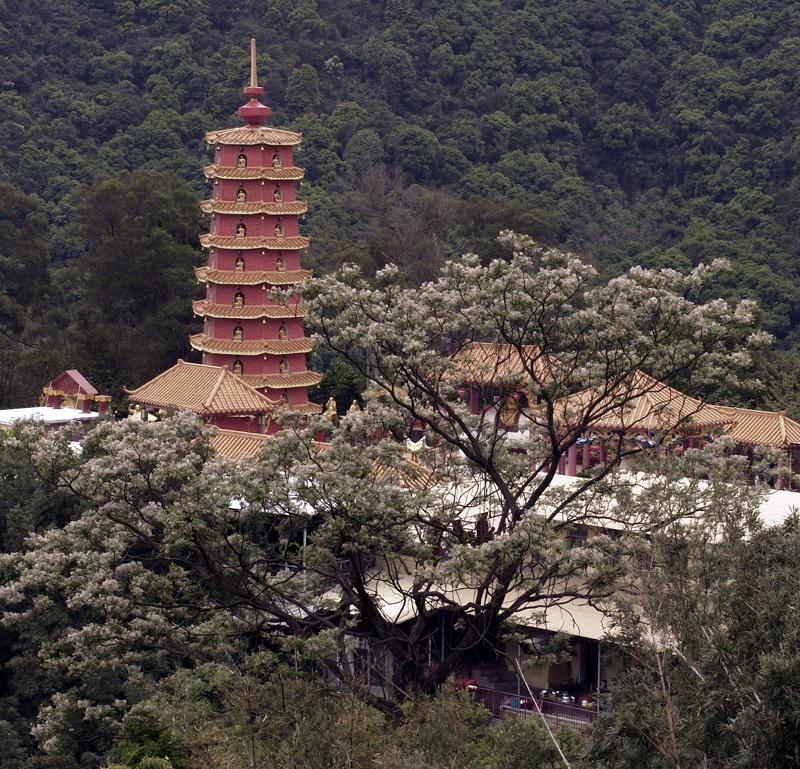 Monastery of Ten Thousand Buddhas